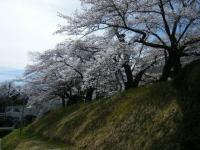 2019-04-20一関市役所千厩支所006