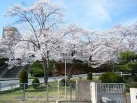 2019-04-20一関市役所千厩支所002
