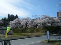 2019-04-20一関市役所千厩支所001