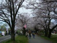 2019-04-21北上展勝地011