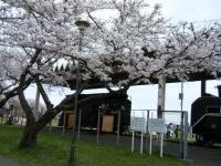 2019-04-21北上展勝地009