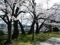 2019-04-20一関市役所千厩支所017
