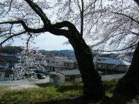 2019-04-20一関市役所千厩支所021