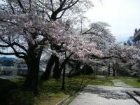 2019-04-20一関市役所千厩支所015