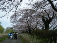 2019-04-21北上展勝地040