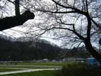 2019-04-21北上展勝地044