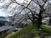 2019-04-20一関市役所千厩支所026