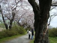 2019-04-21北上展勝地059