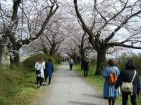 2019-04-21北上展勝地062