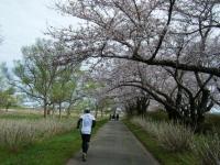 2019-04-21北上展勝地071