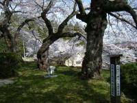 2019-04-20一関市役所千厩支所060