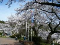2019-04-20一関市役所千厩支所059