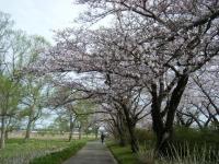 2019-04-21北上展勝地073