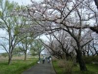 2019-04-21北上展勝地079