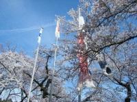 2019-04-20一関市役所千厩支所063