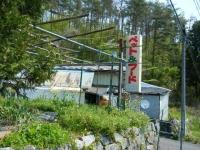 2019-05-11しろぷーうさぎ03