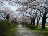 2019-04-21北上展勝地098