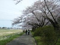 2019-04-21北上展勝地107