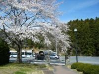 2019-04-20一関市役所千厩支所085