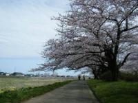 2019-04-21北上展勝地111