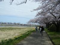 2019-04-21北上展勝地119