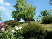 花と泉の公園・牡丹園012