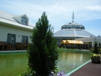 2019-05-18花と泉の公園ベゴニア館001
