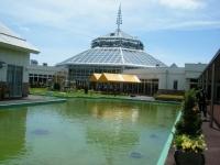 2019-05-18花と泉の公園ベゴニア館002