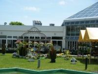 2019-05-18花と泉の公園ベゴニア館003
