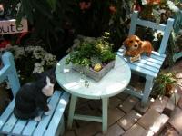 2019-05-18花と泉の公園ベゴニア館019
