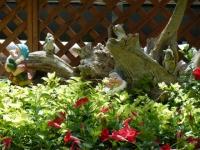 2019-05-18花と泉の公園ベゴニア館029