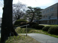 2019-04-20一関市役所千厩支所097
