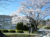 2019-04-20一関市役所千厩支所100