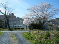 2019-04-20一関市役所千厩支所103