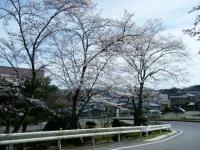 2019-04-20一関市役所千厩支所107