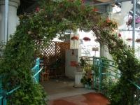 2019-05-18花と泉の公園ベゴニア館054