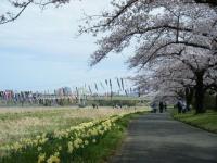 2019-04-21北上展勝地122