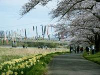 2019-04-21北上展勝地123