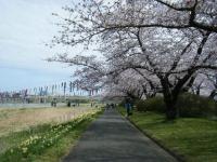2019-04-21北上展勝地125