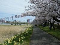 2019-04-21北上展勝地127
