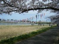 2019-04-21北上展勝地128