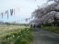 2019-04-21北上展勝地130