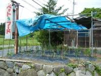 2019-05-31重箱石06