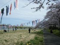 2019-04-21北上展勝地135