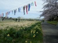 2019-04-21北上展勝地139
