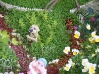 2019-05-18花と泉の公園ベゴニア館089