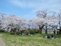 2019-04-21北上展勝地179