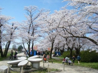 2019-04-21北上展勝地182