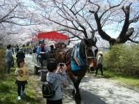 2019-04-21北上展勝地195