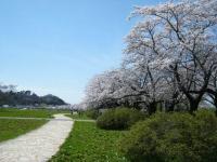 2019-04-21北上展勝地197